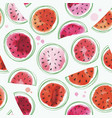 seamless watermelons pattern with watercolor vector image vector image