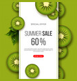 summer sale banner with sliced kiwi pieces leaves vector image vector image