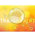 Abstract defocused background with transparent vector image vector image