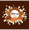 almond milk splashing effect with almond set vector image vector image