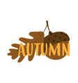 autumn card with acorn vector image vector image