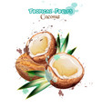 Coconut fruits watercolor delicious