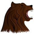 grizzly bear mascot head graphic vector image