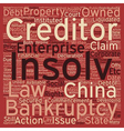 Insolvency And Corparate Bankruptcy In China text vector image vector image
