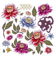 set painted flowers asters japanese style vector image