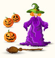 witch in the green hat broom and pumpkin lantern vector image