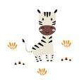 cartoon zebra on white background cute animals vector image