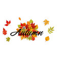 hello autumn falling leaves background imag vector image