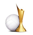 volleyball game award volleyball ball vector image vector image
