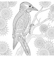 woodpecker adult coloring page vector image vector image
