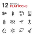 12 plant icons vector image vector image