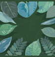 background tropical leaves suitable for nature vector image vector image