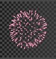 firework pink bursting isolated transparent vector image