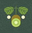 kiwi cut with leaves and flowers vector image vector image