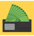 money in wallet vector image