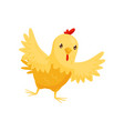 small yellow chicken with wide open wings farm vector image vector image