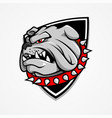 big bulldog head vector image