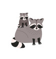 cute amusing raccoon with cub isolated on white vector image vector image