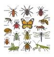 insect beetle bug or ant and flying bee vector image