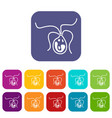 bacterial cell icons set vector image vector image