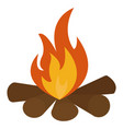 camp fire on white background vector image