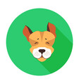 happy muzzle of jack russell terrier flat icon vector image