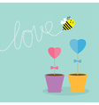 Heart stick flower in the pot and bee with love vector image vector image