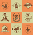 Set of poultry farm logo emblem Chicken turkey vector image vector image