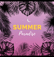 vintage summer paradise vector image
