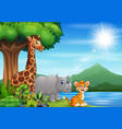 wild animal playing in nature landscape vector image vector image