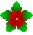 Christmas Flower vector image vector image