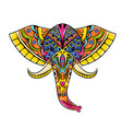 colored entangle head elephant vector image vector image