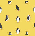 cute penguin characters in different poses vector image vector image