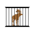 Deer in a cage Animal in Zoo behind bars Elk with vector image