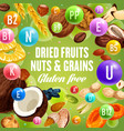 dried fruits nuts and grains gluten free food vector image vector image