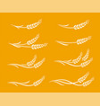 hand drawn wheat ears food set icons vector image