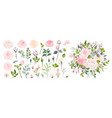 set floral branch flower pink rose green vector image
