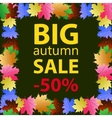 Big autumn sale design template poster vector image
