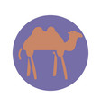 camel animal icon block style design vector image vector image