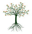 green tree and roots vector image vector image