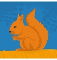Squirrel sitting on a branch vector image