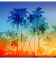 palms silhouettes tropical sunset vector image