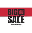 big sale limited banner vector image