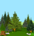 forest 003a vector image vector image