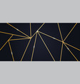 luxury wallpaper or background vector image vector image