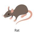 rat icon isometric style vector image vector image