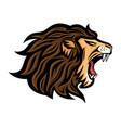 roaring lion icon vector image