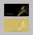 set horizontal banners wheat spikelet vector image