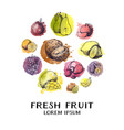 vintage ink hand drawn collection fresh fruits vector image