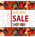 autumn sale banner with autumn creative background vector image vector image